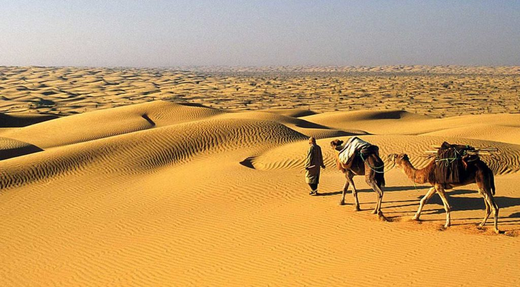 Face à l'immensité du désert du sud tunisien
